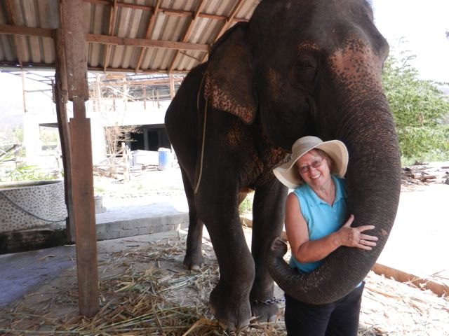 My mom meeting her elephant!