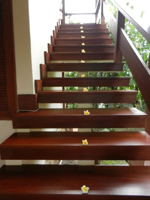 Stairs heading upstairs...our hosts had placed frangipani flowers everywhere we looked when we first arrived!